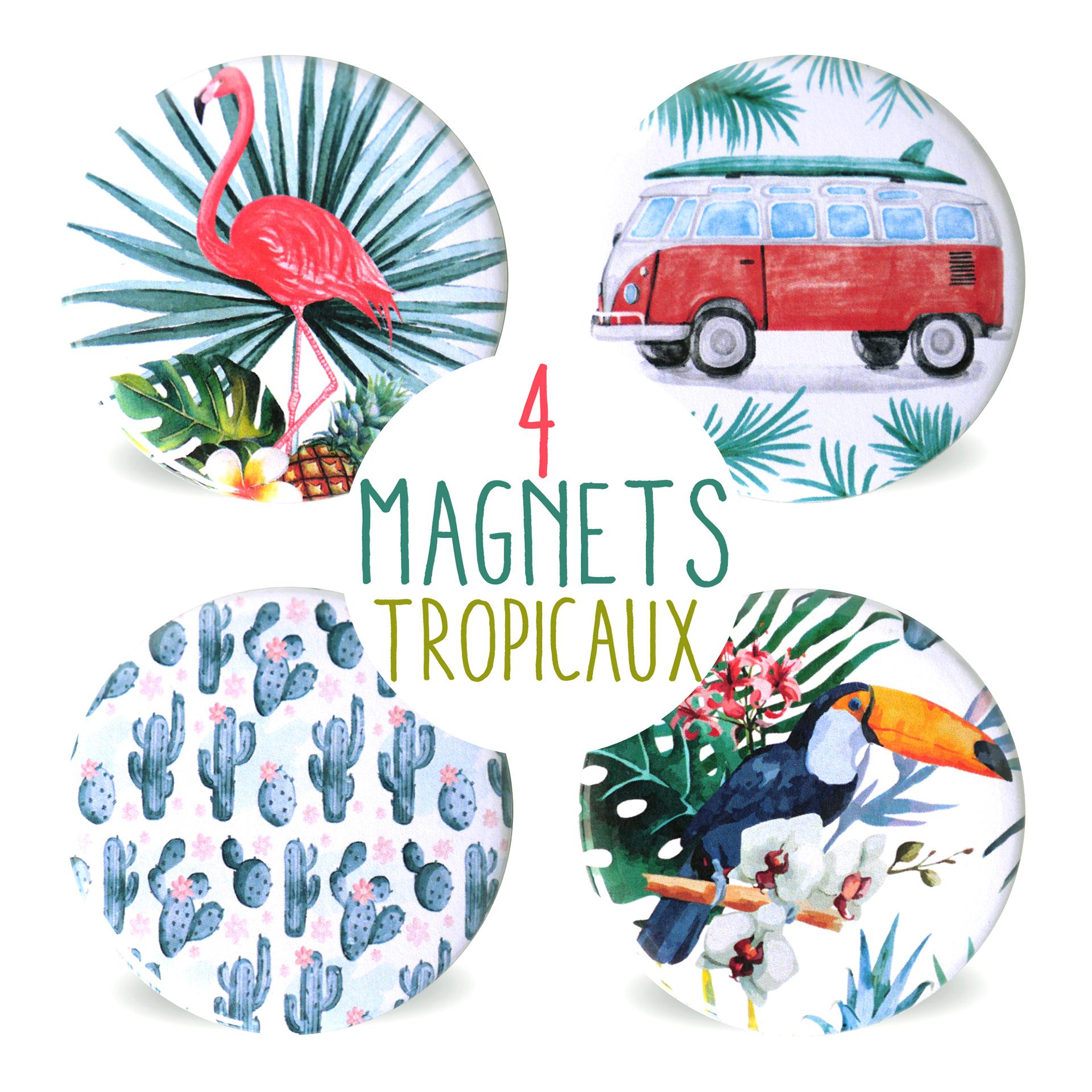 lot de 4 magnets rond 56 mm aimant frigo cuisine tropical exotique flamant rose toucan cactus. Black Bedroom Furniture Sets. Home Design Ideas